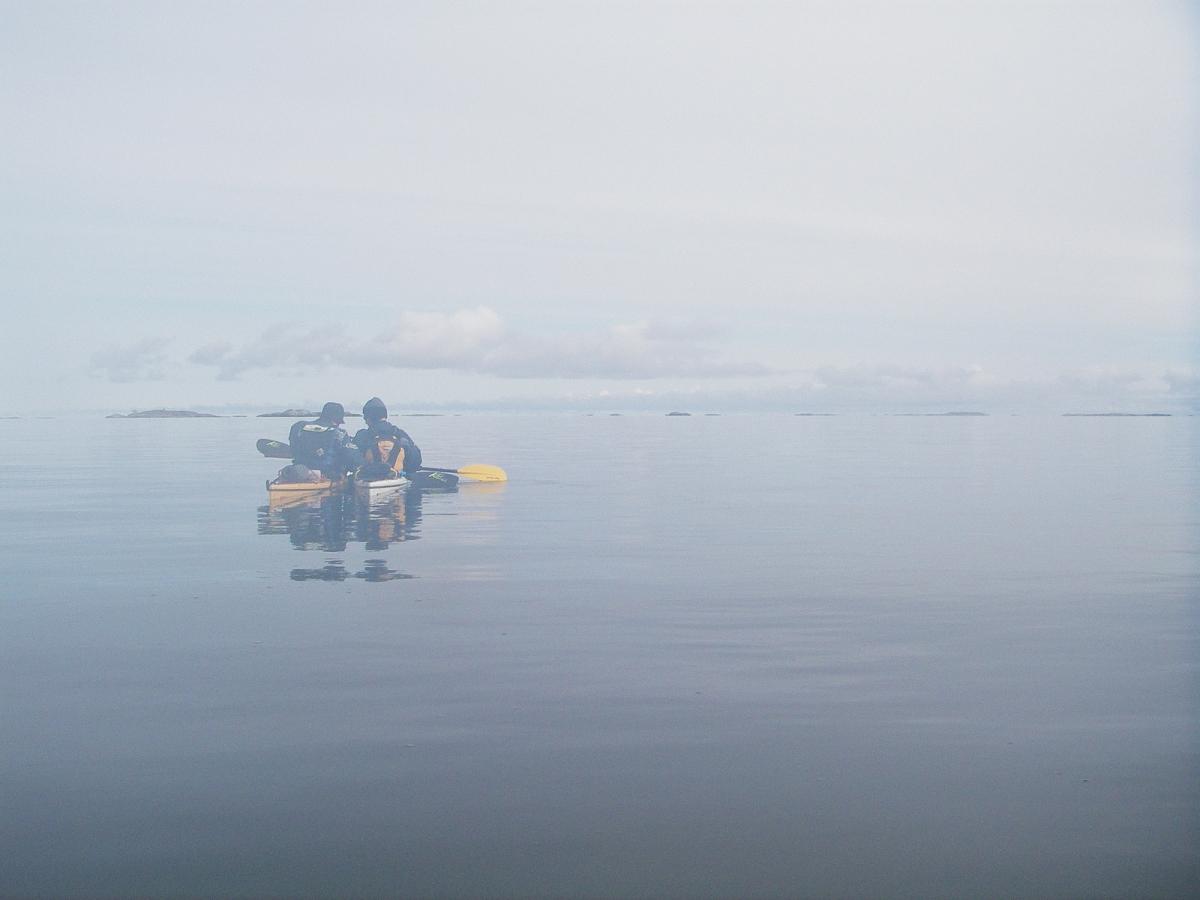 Två kajakpaddlare ligger sida vid sida i dimma och läser sjökort.