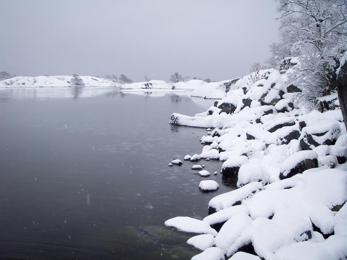Vinter i Norrpada