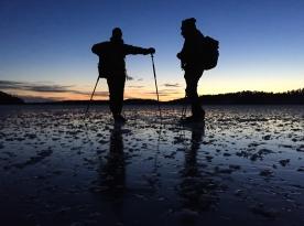 Silhuetter av långfärdsskridskoåkare på Nynäsviken, Nynäshamn.