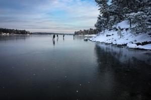 En grupp långfärdsskridskoåkare rundar en snöig udde på Norrtäljeviken