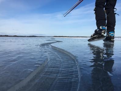 Långfärdsskridskoåkare åker längs en slingrande spricka i Stockholms skärgård