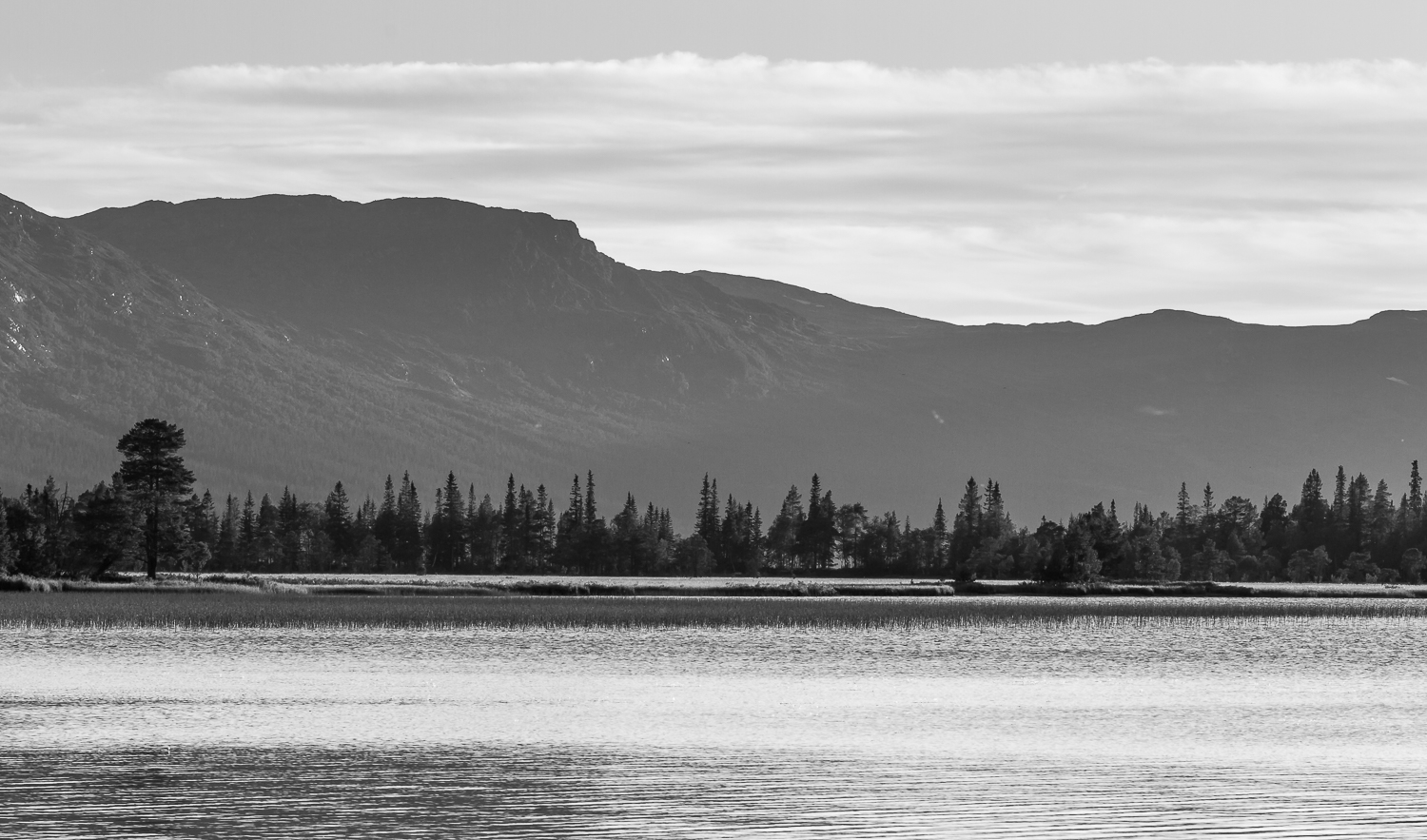 copyright goran pehrson-lake-forest-mountains-monochrome