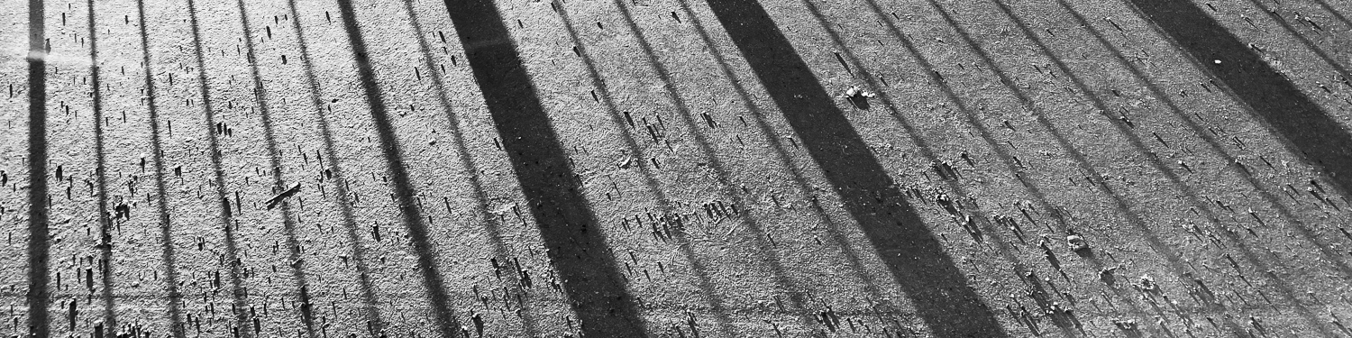 black and white-shadows-concrete