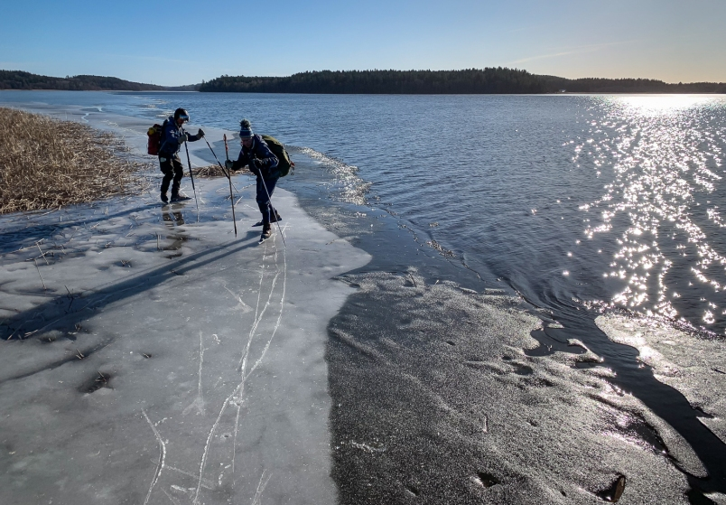 Långfärdsskridskoåkare längs iskant på Mälaren