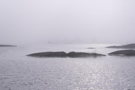 Dimma över Långviksskär