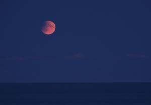 Månsken över horisonten