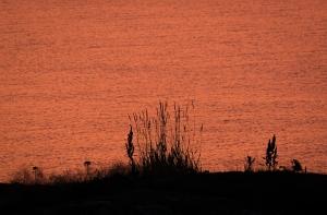 Silhouette i solnedgång, Huvudskär