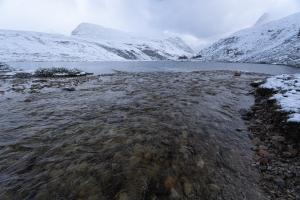 Bäck rinner ner i Rondvatnet, Rondane nationalpark, Norge