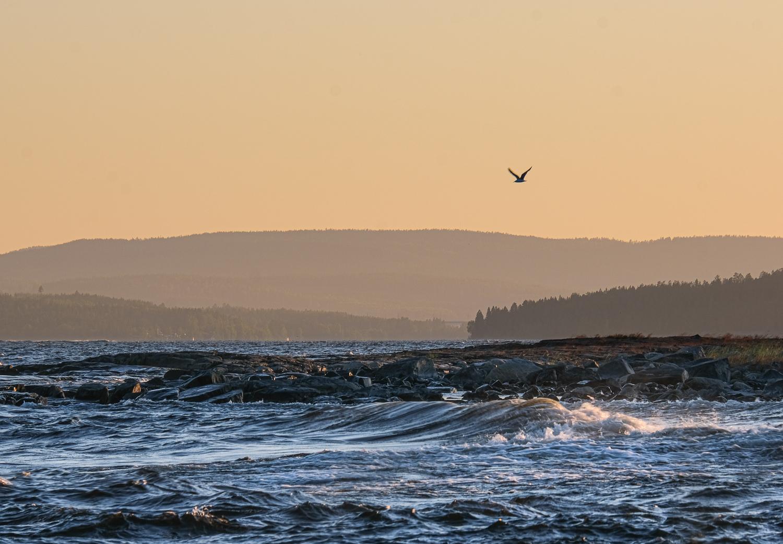 Solnedgång över Höga kusten