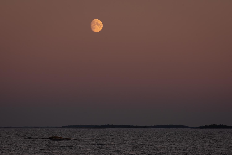 Månsken över Roslagens skärgård