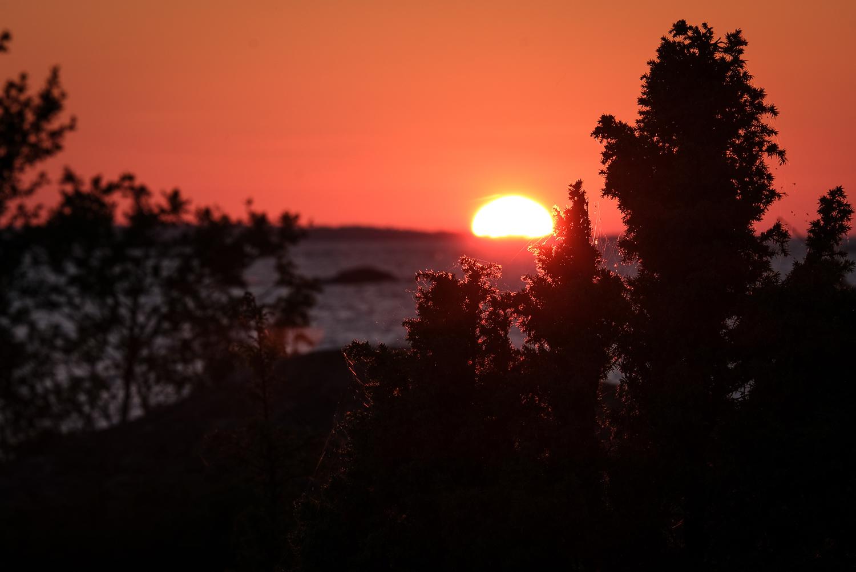 Solnedgång över Fluttuskären, östra Gräsö naturreservat